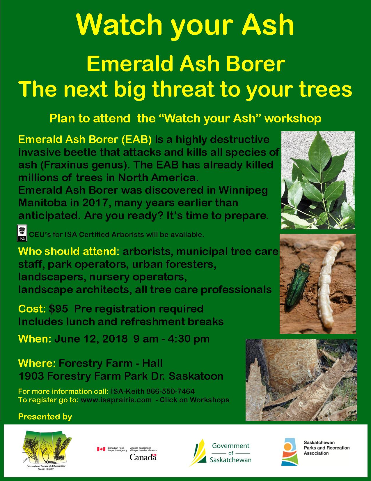EAB Watch your Ash poster